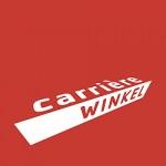 Logo Carrièrewinkel Projecten